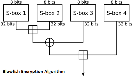 blowfish encryption algorithm